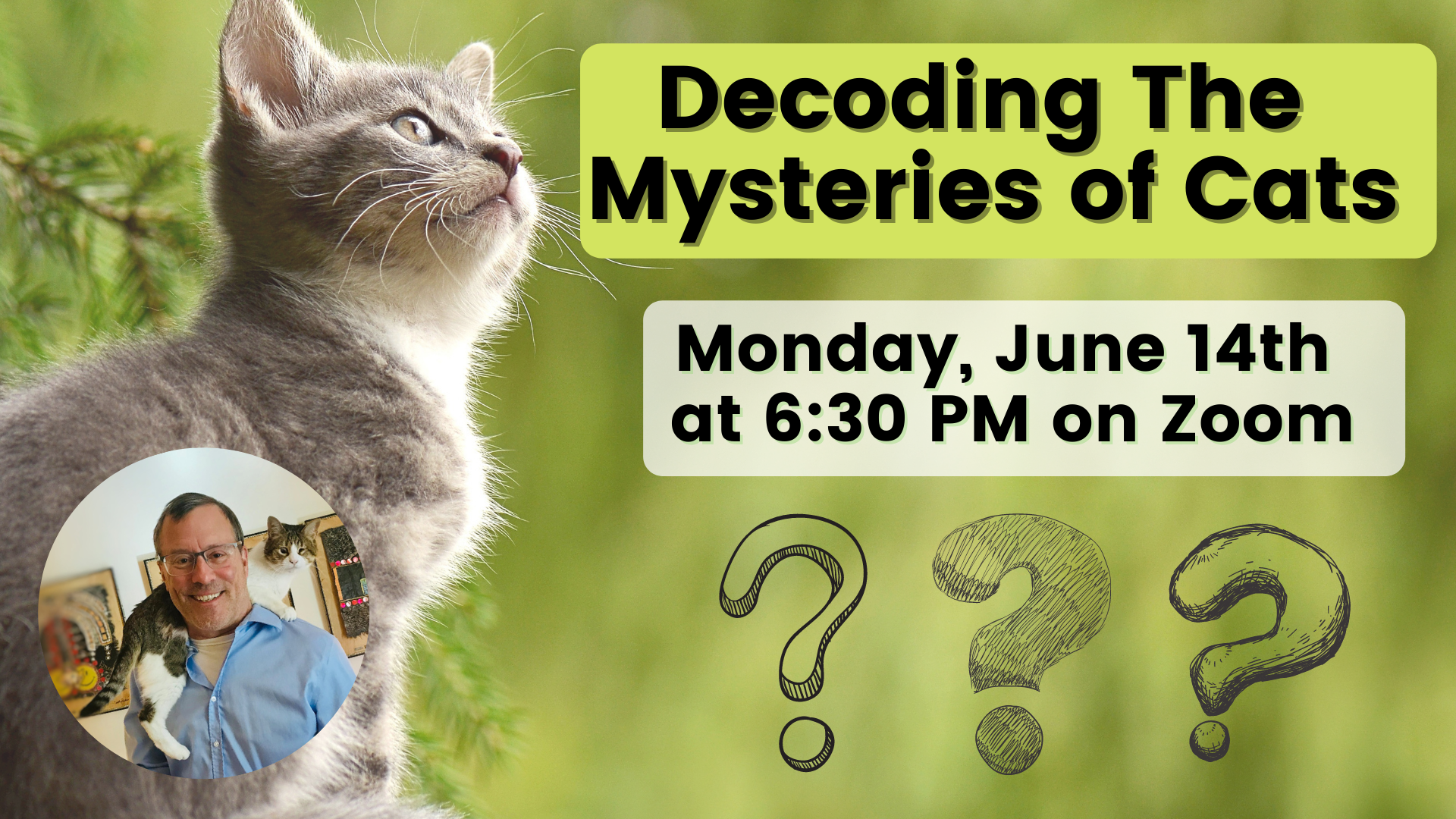 Decoding the mysteries of cats
